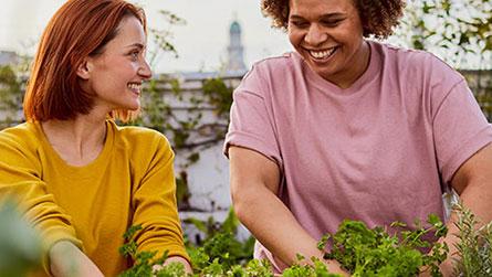 Entdecken Sie die Vorteile einer Mitgliedschaft.